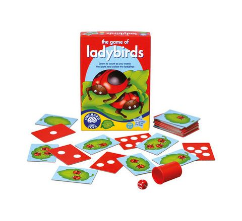 Ladybird Counting Game Each