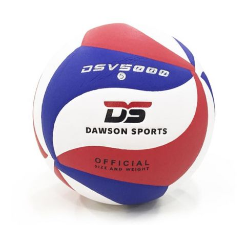 DS 5000 Volleyball - Size 5