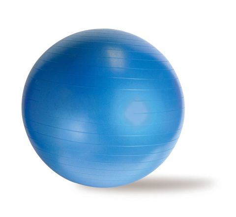 DS Anti Burst Gym Ball